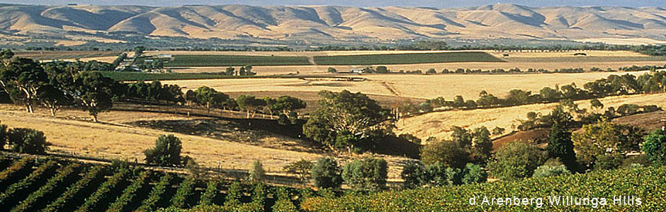 darenberg-vineyards-and-Willunga-Hills.jpg
